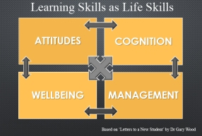 Pic: Four Factors of Lifelong Learning